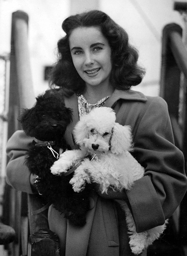 vintage celebs with pets (1)