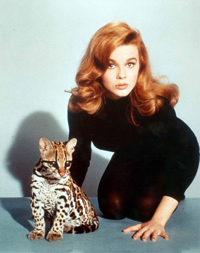 vintage celebs with pets (11)