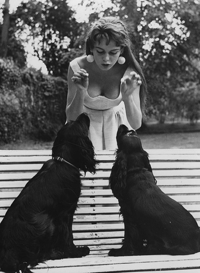 vintage celebs with pets (2)