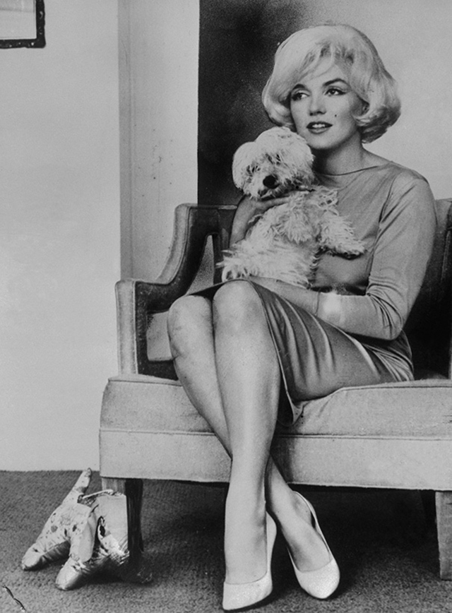 vintage celebs with pets (6)